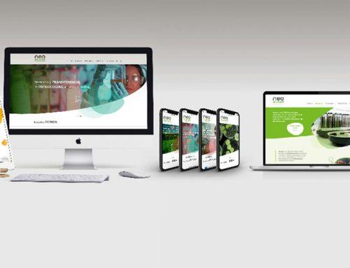 Diseño Web y tiendas on-line. Asturias